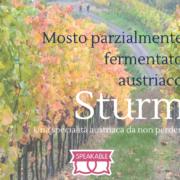 Il mosto parzialmente fermentato austriaco: lo Sturm